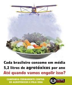 agrotoxicos_consumo