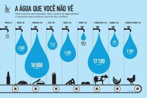 LEMBRE: em consumo de água, gás metano jogado na atmosfera e espaço ocupado na plantação de ração...tem mais bois que pessoas no Brasil!