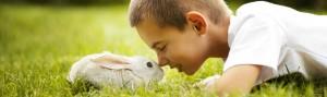 A amizade surge, o respeito pela vida, o amor entre os seres...