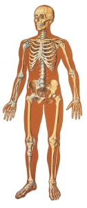 Caso pessoal: fui operado do menisco faz uns 30 anos e tenho um disco da coluna lombar prejudicado, ambas lesões do futebol. Sempre com dores, joelho saindo do lugar, etc. Até que virei ciclista há uns 10 anos. Solução total: pedalar me fortalece as articulações do joelho e da coluna.