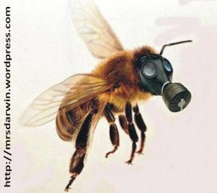 abelha com mascara1